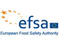 Evropský úřad dal zelenou kukuřici s šesti modifikacemi