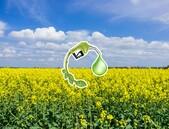 Vědci zvýšili produkci rostlinného oleje v listech