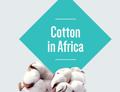 GM bavlník v Africe - nová publikace