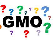 Praktické otázky v oblasti GMO
