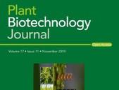 GM plodiny přispívají k lepšímu zdraví pěstitelů i spotřebitelů