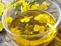 Řepkový olej jako významný zdroj omega-3 mastných kyselin