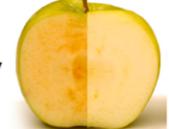Další nehnědnoucí jablko na trhu