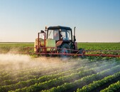Dvacet let pěstovaný strach z GMO udělal své
